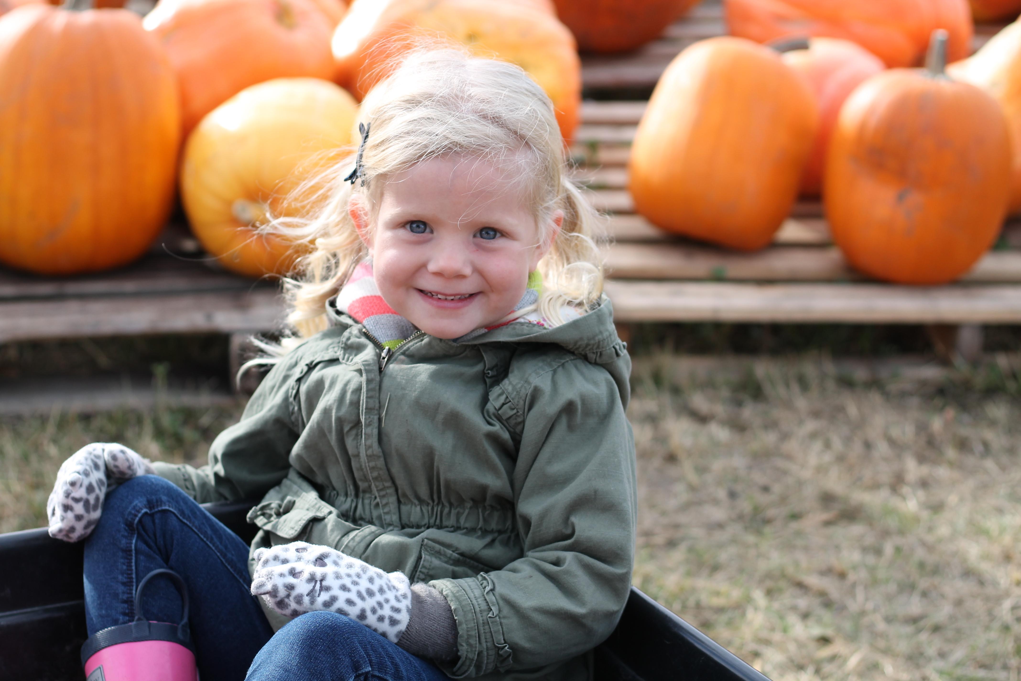 Okanagan Pumpkin Patch